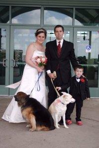 weddingdogs